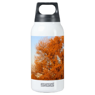 BEAUTIFUL AUTUMN DAY 0.3L INSULATED SIGG THERMOS WATER BOTTLE