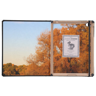 BEAUTIFUL AUTUMN DAY COVERS FOR iPad