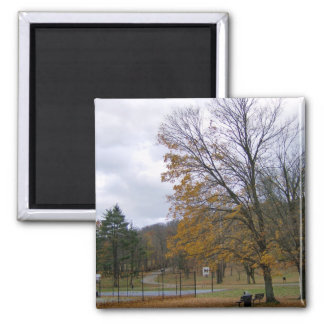 Beautiful Autumn Day Fridge Magnet Fridge Magnets