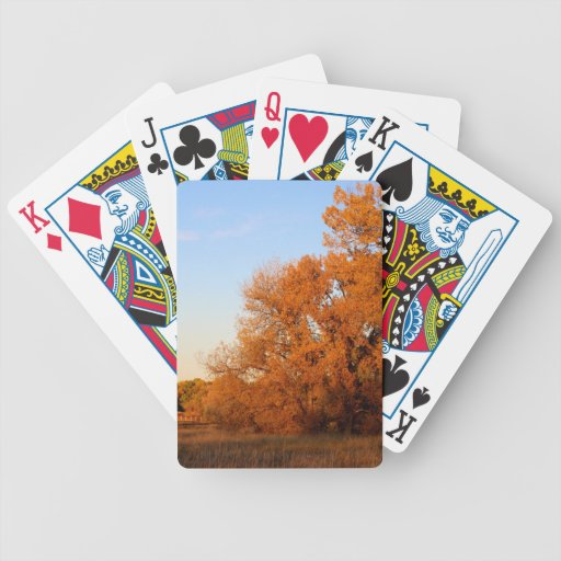 BEAUTIFUL AUTUMN DAY BICYCLE POKER CARDS