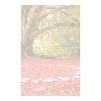 Beautiful Autumn Fall Nature Fairy Ring Customized Stationery
