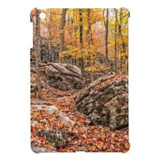 Beautiful Autumn Forest Case For The iPad Mini