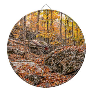 Beautiful Autumn Forest Dartboard