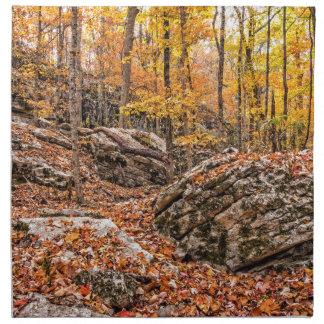 Beautiful Autumn Forest Napkin
