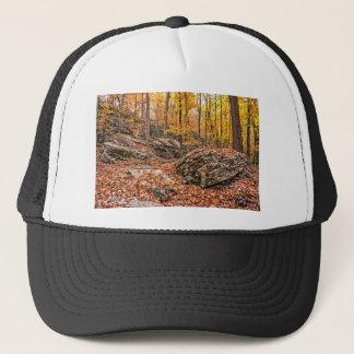 Beautiful Autumn Forest Trucker Hat