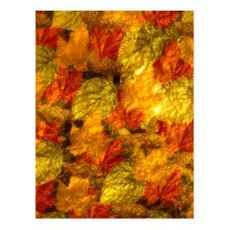 Beautiful Autumn Leaves Postcard