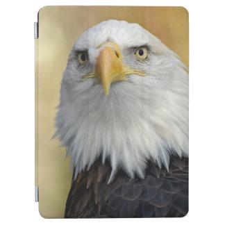 Beautiful bald eagle iPad air cover