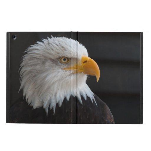 Beautiful bald eagle portrait iPad air cover