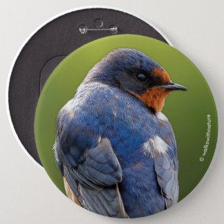 Beautiful Barn Swallow 6 Cm Round Badge
