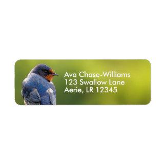 Beautiful Barn Swallow Return Address Label