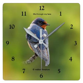 Beautiful Barn Swallow Square Wall Clock