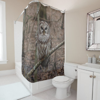 Beautiful Barred Owl Print Shower Curtain