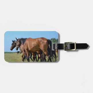 Beautiful Bay Horses Luggage Tag