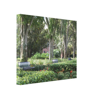 """Beautiful """"Benches in Park"""" Wrapped Canvas Photo"""