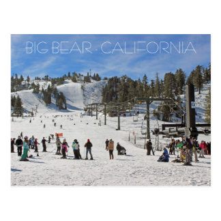 Beautiful Big Bear Postcard! Postcard