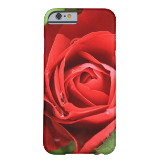 Beautiful Big Red Rose Flower Floral Barely There iPhone 6 Case