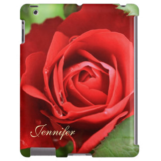 Beautiful Big Red Rose Flower Floral Name