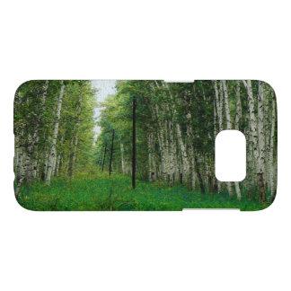 Beautiful Birch Tree Forest Art
