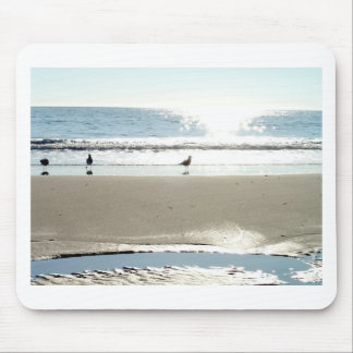 Beautiful Birds and Surf Mousepad