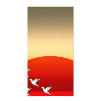 Beautiful Birds flying in evening sky Custom Photo Card