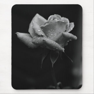 Beautiful Black and white rose Mouse Pad
