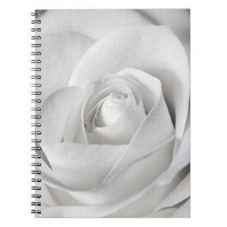 Beautiful Black and White Rose Spiral Notebooks