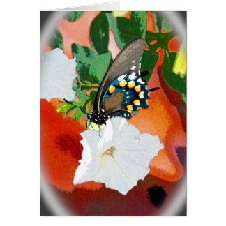 Beautiful Black Creatures - Swallowtail Butterfly Greeting Card