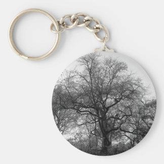 Beautiful Black White Landscape Photo Keychain