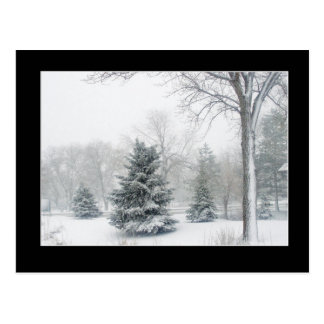 Beautiful Blizzard Postcard - Customized