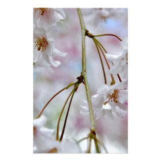 Beautiful Blossoms Stationery