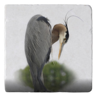 Beautiful Blue Heron Trivet