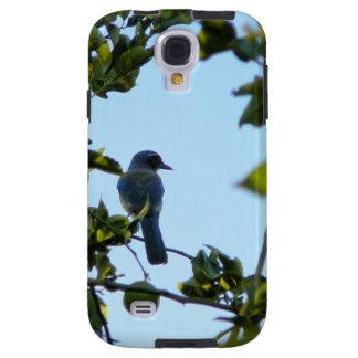 Beautiful Blue Jay Bird Galaxy S4 Case