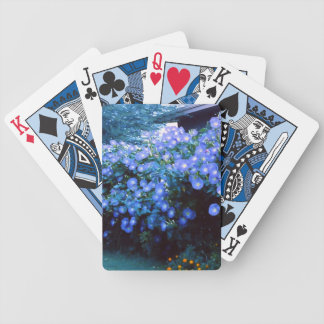 Beautiful blue morning glory flowers playing cards