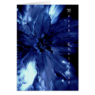 Beautiful blue pointsetta Christmas card