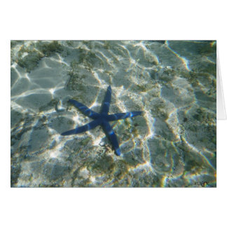 Beautiful Blue Starfish Card