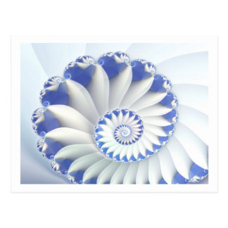 Beautiful Blue & White Sea Shell Fine Fractal Art Postcard