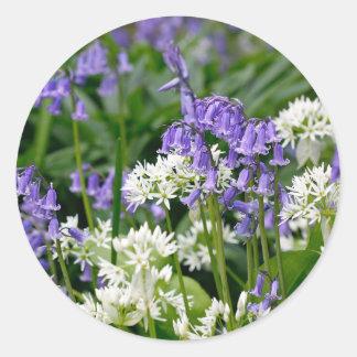Beautiful Bluebells and Wild Garlic Round Sticker