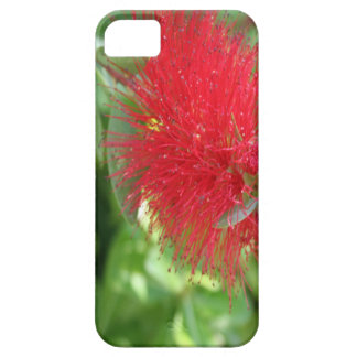 Beautiful Bottle Brush Flower With Garden Backgrou iPhone 5 Case