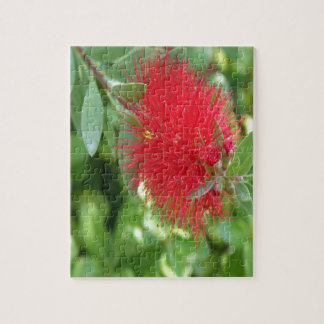Beautiful Bottle Brush Flower With Garden Backgrou Jigsaw Puzzle