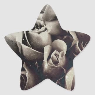 Beautiful Bouquet Roses Grunge Star Sticker
