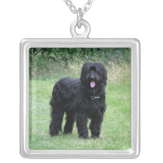 Beautiful briard dog necklace, pendant, gift idea square pendant necklace