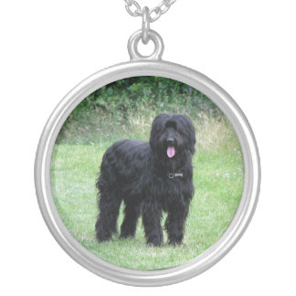Beautiful briard dog necklace, pendant, gift idea round pendant necklace