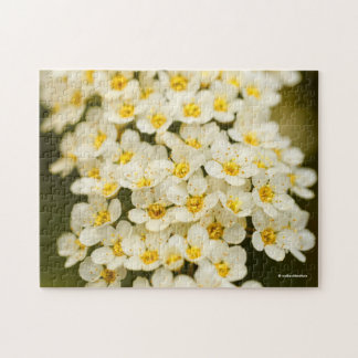 Beautiful Bridal Wreath Spiraea Jigsaw Puzzle