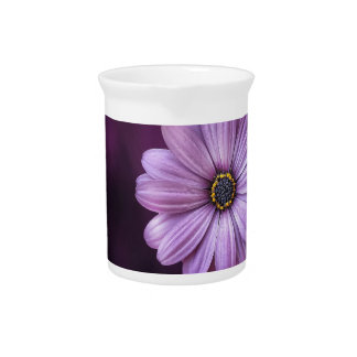 Beautiful, bright, elegant, pink-purple daisy pitcher