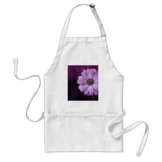 Beautiful, bright, elegant, pink-purple daisy standard apron