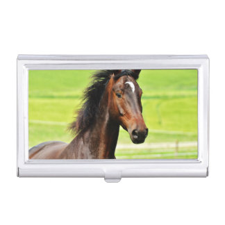 Beautiful Brown Horse Green Grass Business Card Cases
