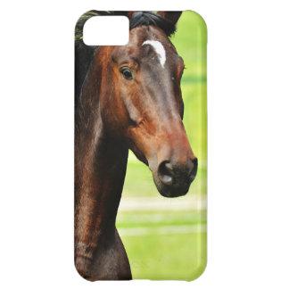 Beautiful Brown Horse Green Grass iPhone 5C Case