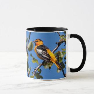 Beautiful Bullock's Oriole the Pear Tree Mug