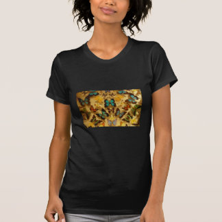 Beautiful Butter Fly Displayed In The Frame T-shirt