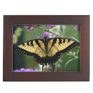 Beautiful Butterfly Keepsake Box